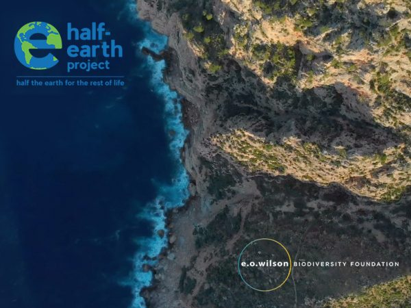 Half-Earth-Project-and-EOWBF-feature