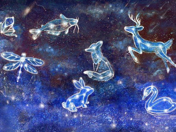 constellation-background-crop