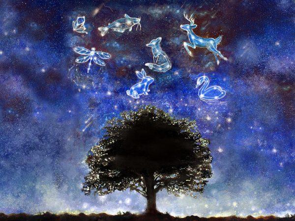 constellation-full