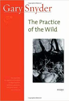 practice-of-the-wild-cover